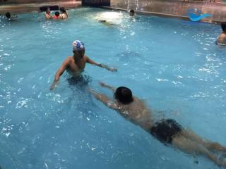 Hướng dẫn kỹ thuật bơi sải